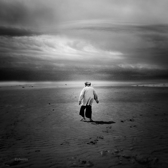 each day she walks to the sea