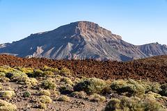 Teide volcano land