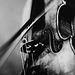 Mon coeur est un violon