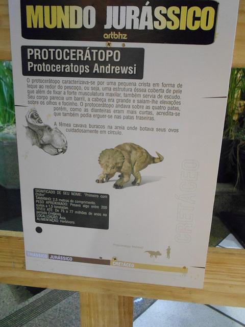 DSCN2820 - Protoceratops andrewsi, Protoceratopsidae Ornithischia
