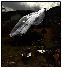 Wind - Wind wehe !