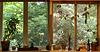 window frame diptych - ipernity SSC