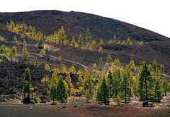 Montaña Samara