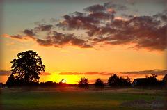 Sonnenuntergang bei Krefeld-Oberbenrad, Germany