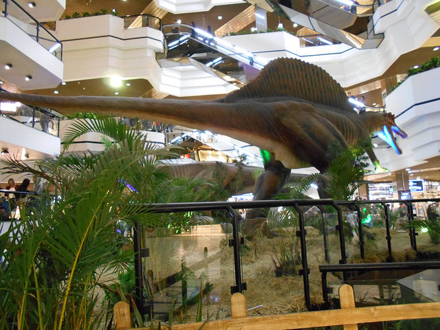 DSCN2823 - Spinosaurus aegyptiacus, Theropoda