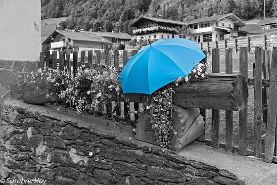Der Regenschirm - The umbrella (PiP)