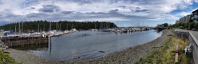 Nanaimo Harbor Stroll (+12 insets!)