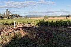 HFF - Das südlichste Weingut Chiles (PiP)