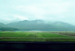 Farms from a train
