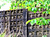 Leafy Fence