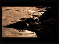 Golden scheint die Moldau in der Abendsonne