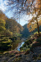The Strid in Autumn