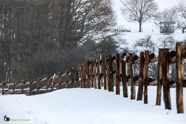 Winterzaun