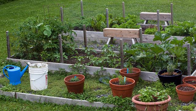 Pleasant garden, Hudson