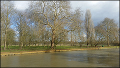 The Isis at Christ Church Meadow