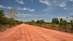 Transpantaneira Highway.  Dry season