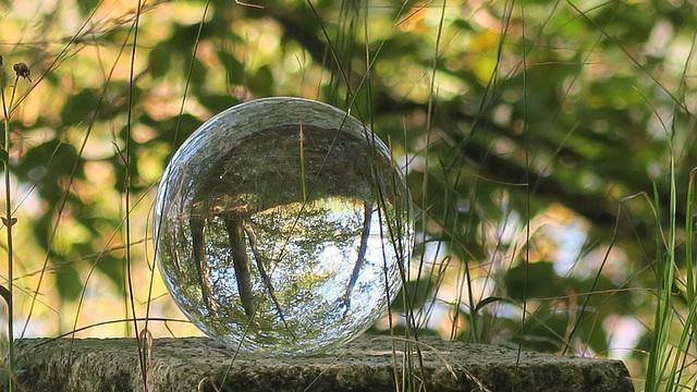 Glaskugel im Grünen (1)