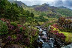 Wales - National Park Snowdonia