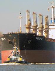 Bulk Carrier (Schüttgutfrachter)   >VERA 9<