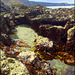 Rock pool, Greenbank Cove