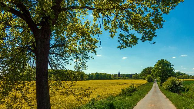 Radtour durch die Felder