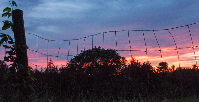 Fence, sunset, Hudson 2