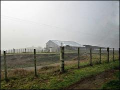 Fences in Fog.