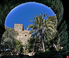 Torbogen am Eingang zur Alcazaba (3 x PiP)