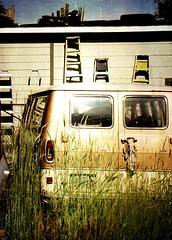 Van in the weeds