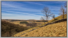 Another Dales View