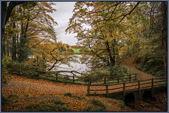 Autumn track by the dams - Chesterfield. UK.