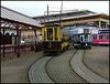 trams at Seaton terminus