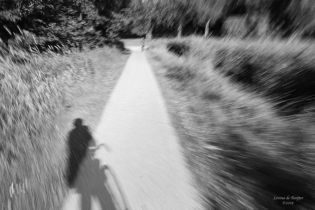 20150707 5D POTN WWPW Bicycles 102