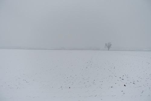 schneefeld-04352