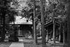 Shrine in the grove