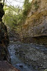 Rappenlochschlucht - an der Felswand der alte Weg (© Buelipix)