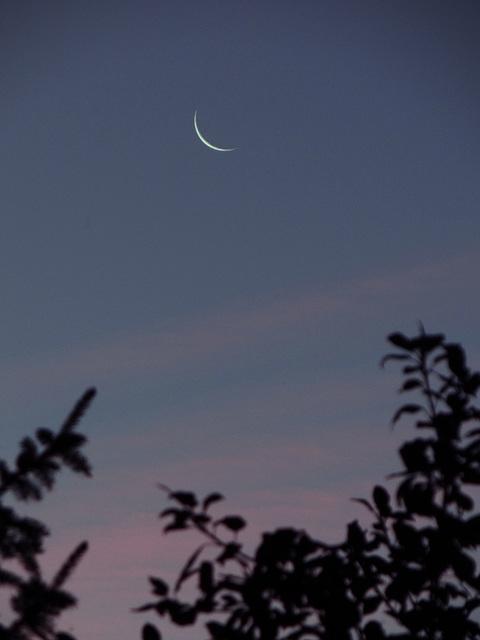 A tiny Moon