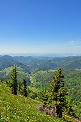 Blick ins Tal (© Buelipix)