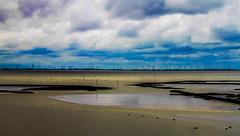 Wadden Sea with Wind Farm