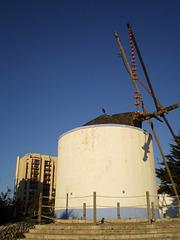 Lisbon mills.