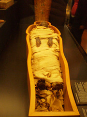 Preserved Egyptian mummy.