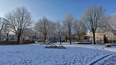 Belfort: 2017.12.01 Première neige 03.