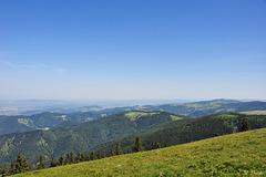 Belchen - Blick in Richtung Norden (© Buelipix)