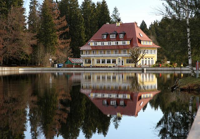 Waldsee in Lindenberg