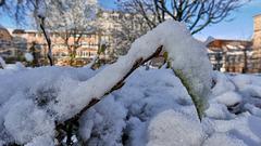Belfort: 2017.12.01 Première neige 05.