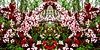 4 (1)..austria flower