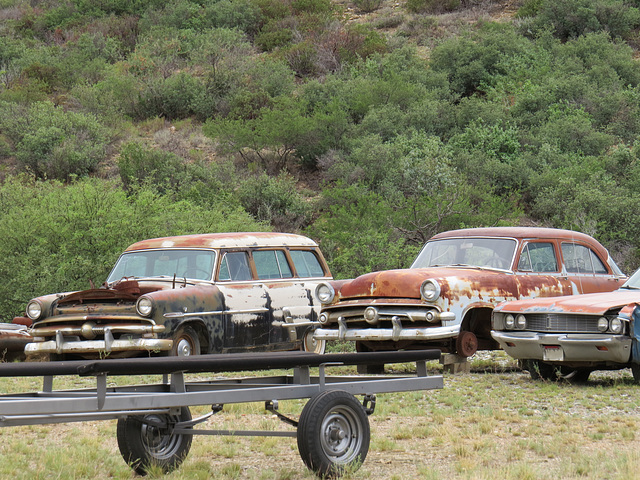 1953 and 1954 Fords