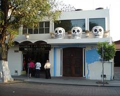 Trio de têtes de squelettes / Skeleton heads trio