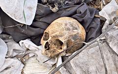 kranio en tombejo