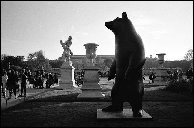 Bear. Tuileries.